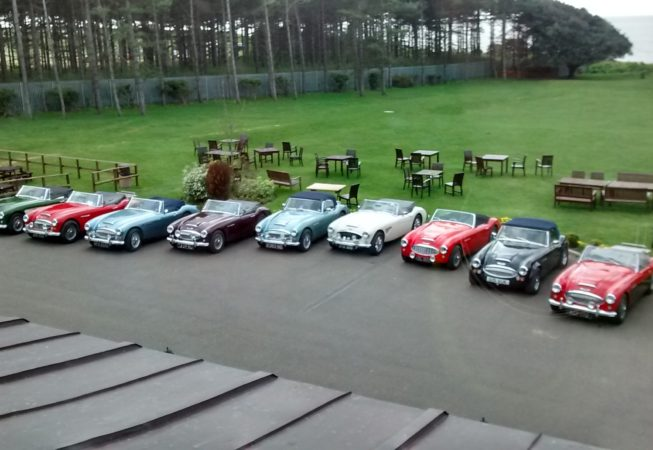 6 Austin Healey cars